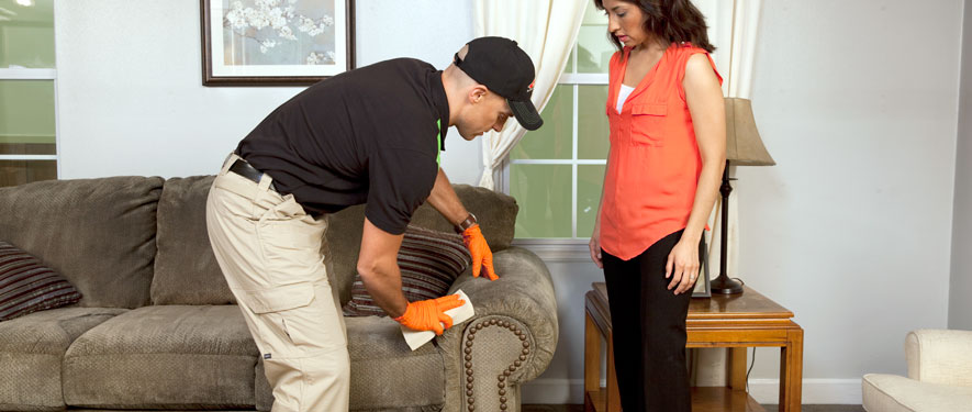 Santa Clarita, CA carpet upholstery cleaning